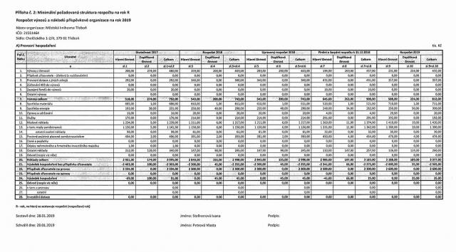 Scan rozpočtu výnosů a nákladů přísp. organizace na rok 2019.